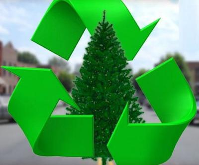 Affordable Christmas Tree Removal in Pennsylvania